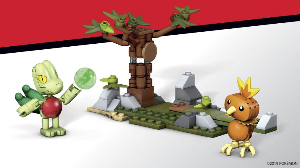 Image of: Torchic vs. Treecko