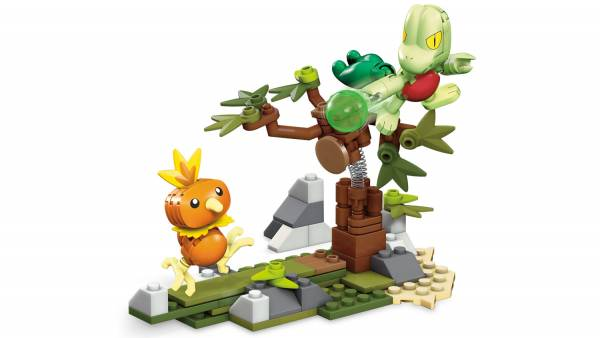 Torchic vs. Treecko